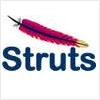 struts logo